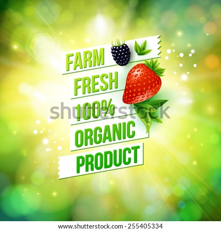 Guaranteed 100 percent Farm Fresh Organic Product poster or card design over a blurred green summer background with sun burst decorated with a ripe strawberry and blackberry, vector illustration. - stock vector