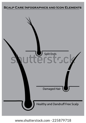 Hair and scalp care info graphics and icon elements - stock vector