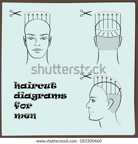 Hairdressing Haircut Diagram Men Stock Vector 283300460 Shutterstock