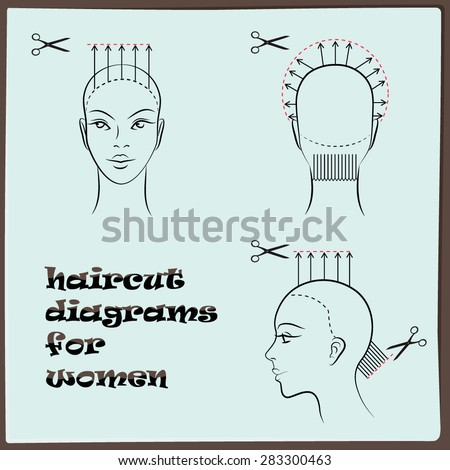 Hairdressing Haircut Diagram Women Stock Vector 2018 283300463