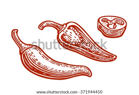 Half and slice chili. Vector engraved vintage illustration.