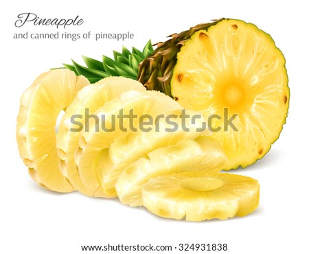 Half cut fresh pineapple and canned sliced pineapple. Vector illustration. - stock vector