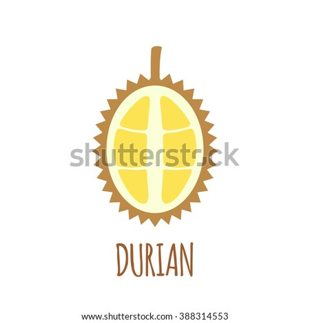 Half of durian icon.  Isolated object. Durian logo.  Healthy food. Vitamin food. Vector illustration.