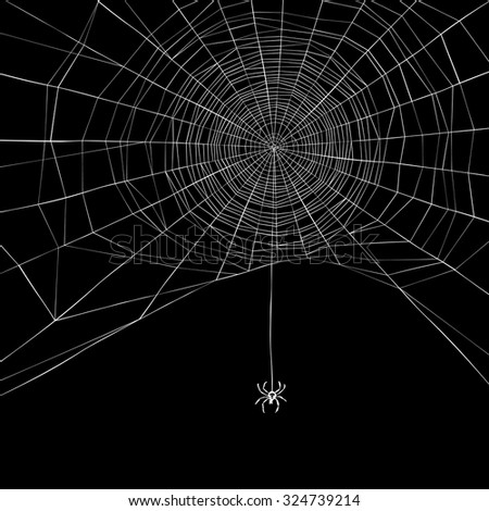 Halloween background. Spider web. Vector illustration - stock vector