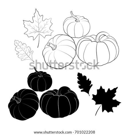 halloween halloween vector illustrationhappy halloweenhand drawn pumpkins and leaves autumn