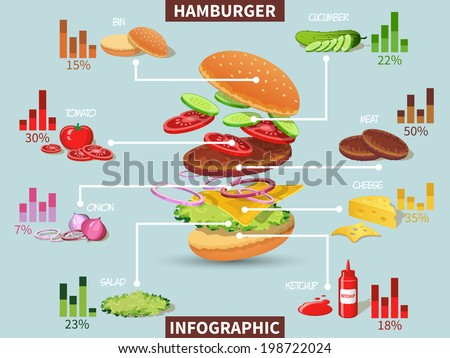 Hamburger ingredients with meat cheese tomato salad bun cucumber infographic vector illustration - stock vector