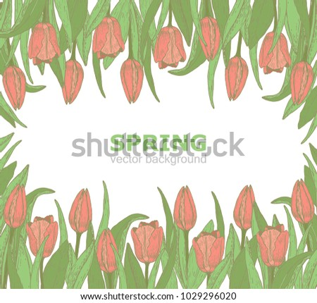 Hand draw background tulips spring flowers stock vector hd royalty hand draw background with tulips spring flowers sketch of flowers vintage style mightylinksfo