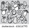 hand draw fruit - stock vector