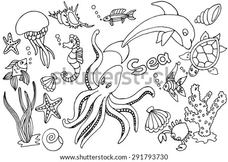 Hand draw set of different marina creatures: fish, seahorse, starfish, octopus, jellyfish, seaweeds, coral, crab, mussels, scallops - stock vector
