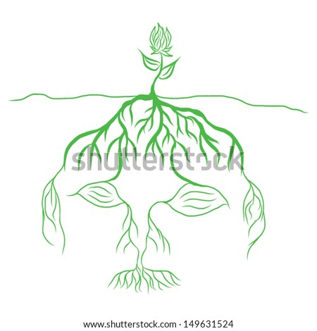 hand draw Tree growing from a roots brain head and seeds underground , Learning concept - stock vector