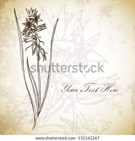 Hand drawing cute abstract floral background. Vector flower. Element for design.