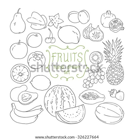Hand drawing fruits set. Vector illustration. - stock vector