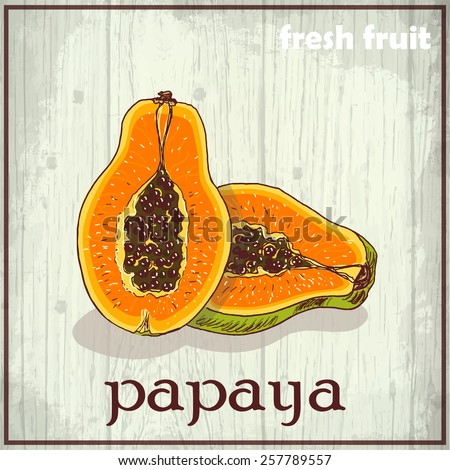 Hand drawing illustration of papaya. Fresh fruit sketch background. Vector illustration for your design