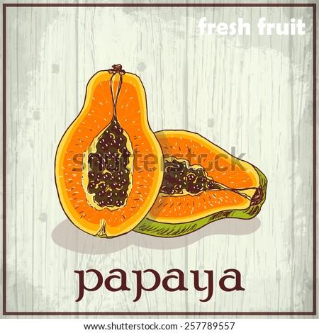 Hand drawing illustration of papaya. Fresh fruit sketch background. Vector illustration for your design