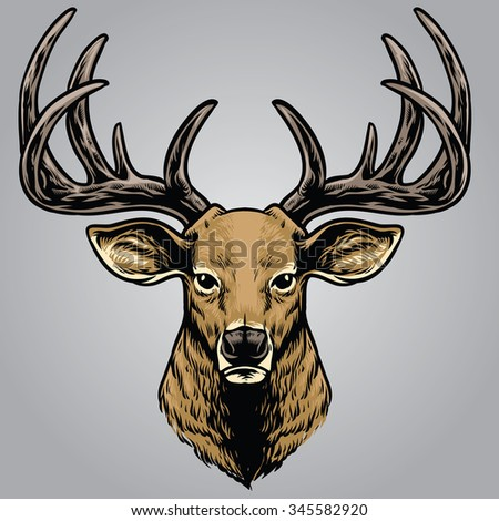 hand drawing style of deer head - stock vector