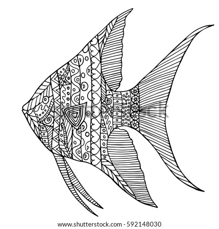 Hand Drawn Angelfish Isolated On White Background In Zen Tangle Style Made By Trace From