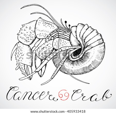 Hand drawn astrological zodiac sign Crab or Cancer. Line art vector illustration of engraved horoscope symbol. Traditional style. Doodle drawing and sketch with calligraphic lettering - stock vector