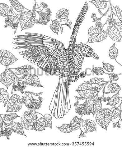 hand drawn bird crowned raven on a branch of a blossoming linden tree - Zentangle Coloring Book