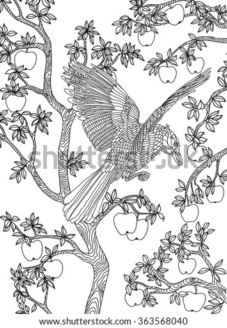 hand drawn bird raven on a branch apple tree coloring page