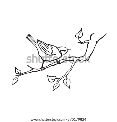 Bird Cartoon Stock Images Royalty Free Images Amp Vectors