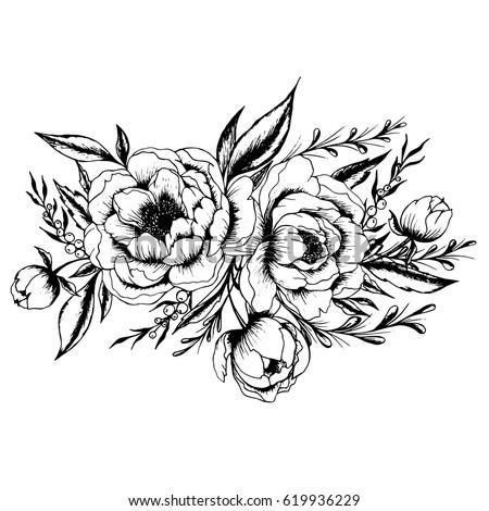Hand drawn black white ink illustration stok vektr 619936229 hand drawn black and white ink illustration of a peony flowers vector peony flower isolated mightylinksfo