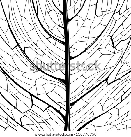 Hand drawn black and white pattern of the leaf structure - stock vector