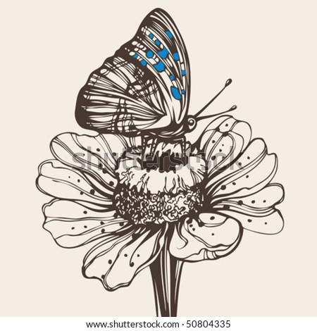 Hand drawn butterfly on a flower - High quality elegant realistic drawing - stock vector
