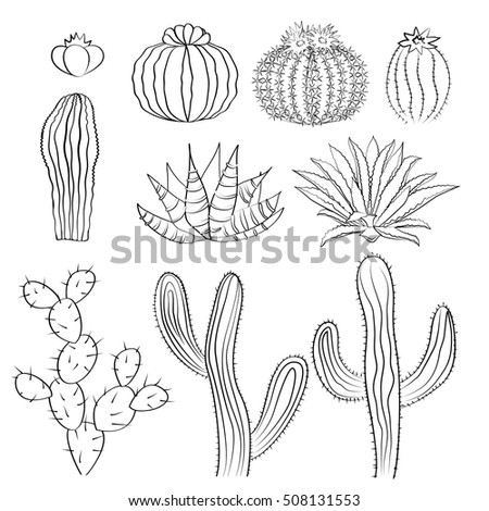 Prickly Pear Cactus Stock Images, Royalty-Free Images & Vectors ...