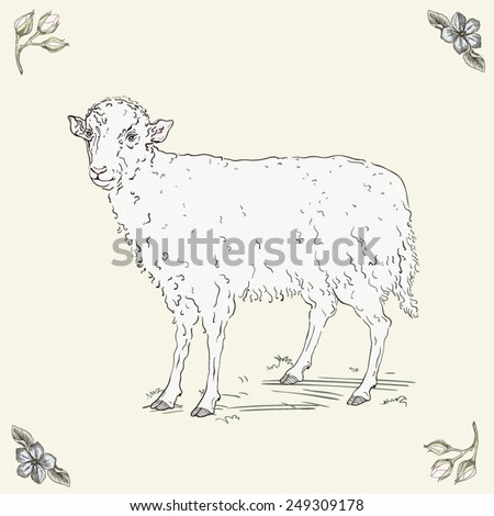 Hand drawn cheerful sheep - stock vector