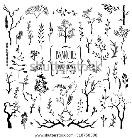 Hand drawn collection of rustic and floral design elements. Tree branches, flowers, plants and leaves ink silhouettes. Isolated vector on white. - stock vector