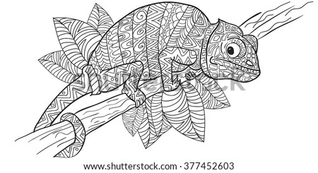Hand Drawn Coloring Pages With Chameleon Zentangle Illustration For Adult Anti Stress Books Or