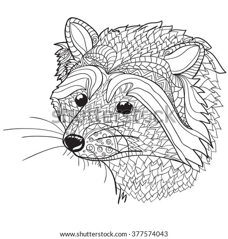 Raccoon Isolated Stock Images, Royalty-Free Images ... Raccoon Face Coloring Pages