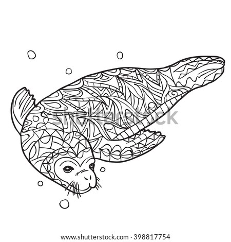Seal animal stock photos royalty free images vectors for Seal coloring pages