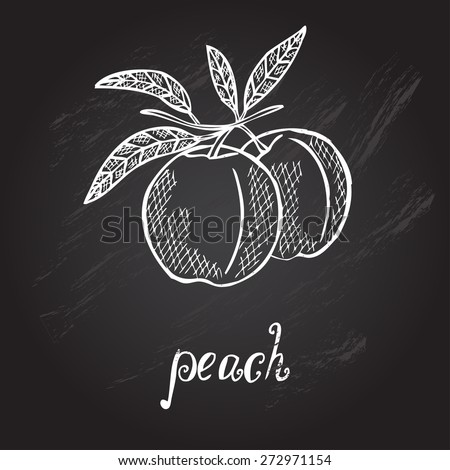 Hand drawn decorative peach fruits, design elements. Can be used for cards, invitations, gift wrap, print, scrapbooking. Kitchen theme. Chalkboard background. Sketch - stock vector