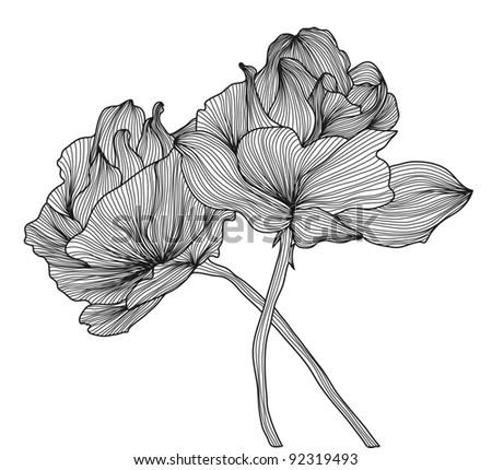 hand drawn decorative roses for your design - stock vector
