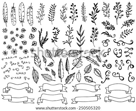 Hand drawn design elements, feathers, leaves, banners, scrolls, swirls and flowers