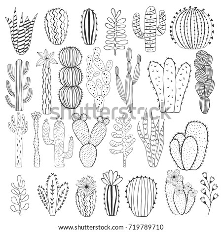 Flower Outline Stock Images, Royalty-Free Images & Vectors ...