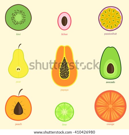 Hand drawn doodle fruits  - stock vector