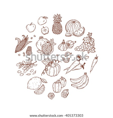 Hand Drawn doodle Fruits and vegetables vector set