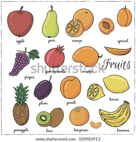 Hand Drawn Doodle Fruits Name Vector Stock Vector 320983913 ...