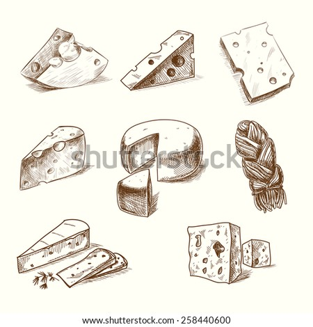 Hand drawn doodle sketch cheese with different types of cheeses in retro style stylized. - stock vector
