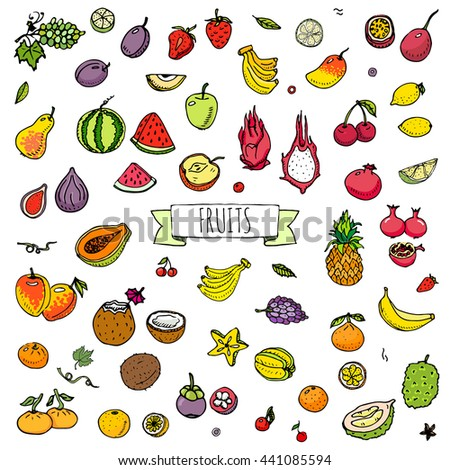 Hand drawn doodle tropical fruits icons set. Vector illustration seasonal berry symbols collection Cartoon different kinds of sweet vegan food Isolated on white background Sketch style