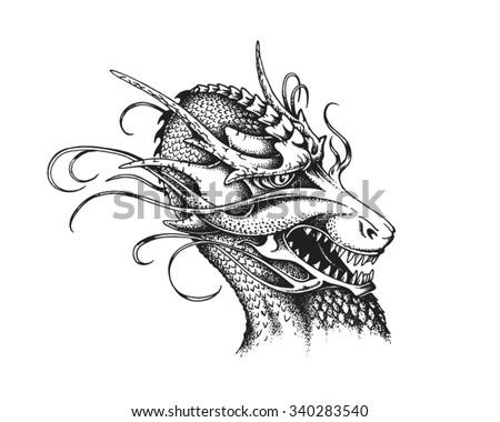 Hand drawn dragon. Vector illustration - stock vector