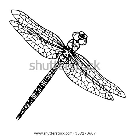 hand drawn dragonfly; coloring page