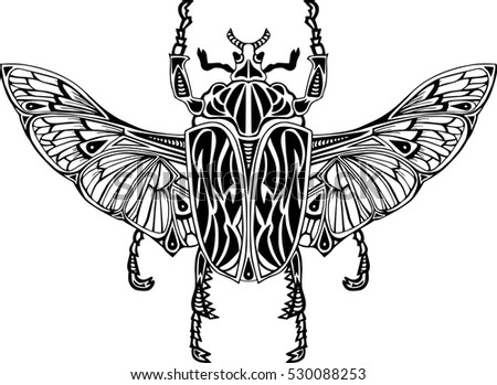 Hand drawn exotic black and white beetle isolated on white background. Vector