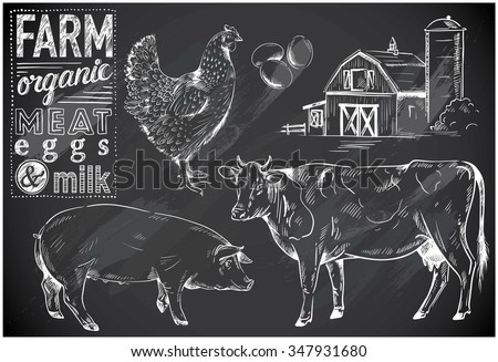 hand-drawn farm animals on chalkboard - stock vector