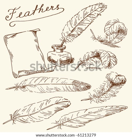 hand drawn feathers - stock vector