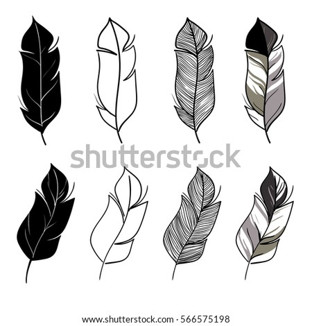Feather Drawing Stock Images, Royalty-Free Images ...