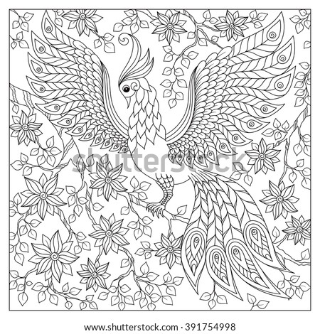 Hand drawn Firebird for anti stress Coloring Page with high details, isolated on white background, illustration in zentangle style. Vector monochrome sketch. Bird collection.