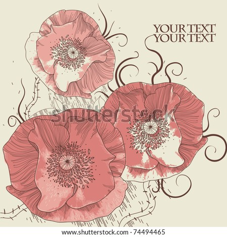 hand drawn floral background with blooming poppies - stock vector